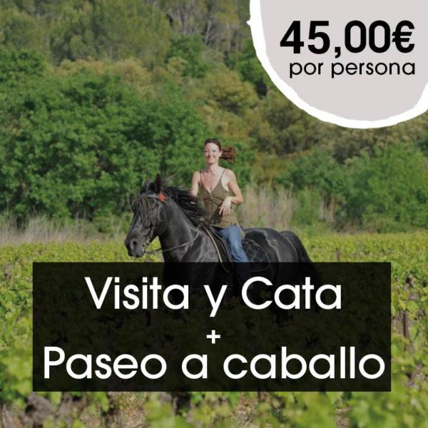 visita-cata-paseo-caballo-bodegasommos