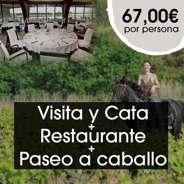 Visita y  Cata + Restaurante + Paseo a caballo
